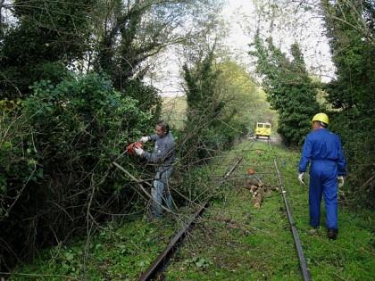 Mozione urgente per acquistare un tratto della ex ferrovia Fano – Urbino