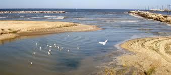 Serfilippi: abbiamo risolto il problema inquinamento all'Arzilla