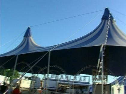 A Fano c'è il Circo. Scattano le polemiche