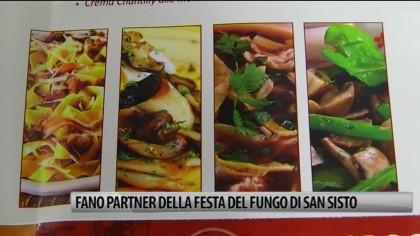 Fano partner della Festa del Fungo di San Sisto – VIDEO
