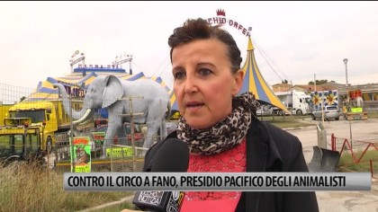 Contro il circo a Fano, presidio pacifico degli animalisti – VIDEO