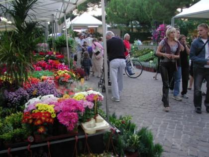 Ritorna a Fano la Festa dei Fiori dal 26 al 28 settembre