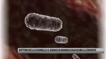 Batterio della legionella, nessun allarmismo: il sindaco di Mondolfo rassicura la comunità – VIDEO