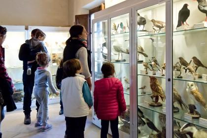 Grand Tour della Cultura 2014: Fano presente col Centro di educazione ambientale Casa Archilei