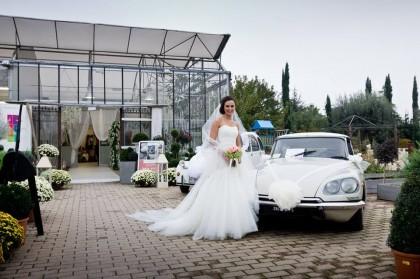 wedding day regini garden
