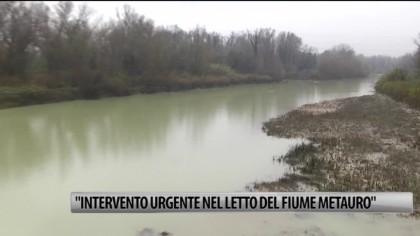"""""""Intervento urgente nel letto del fiume Metauro"""" – VIDEO"""