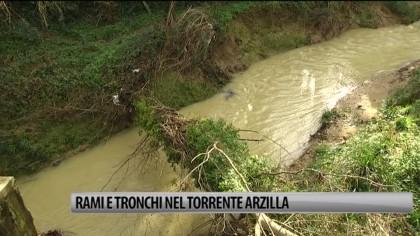 Rami e tronchi nel torrente Arzilla. La preoccupazione dei residenti – VIDEO