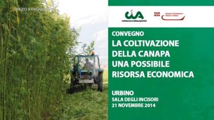 La coltivazione della canapa, una possibile risorsa economica – Cia