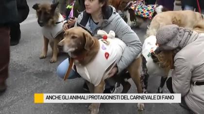 Anche gli animali protagonisti del Carnevale di Fano – VIDEO