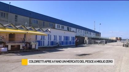 Coldiretti apre a Fano un mercato del pesce a miglio zero – VIDEO