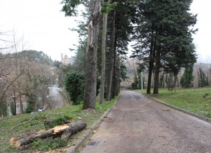 Il luogo dell'incidente a Urbino 2