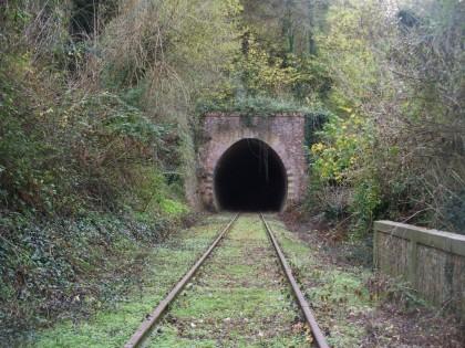 8 marzo, Giornata Nazionale  delle Ferrovie Dimenticate. Interviene For.bici