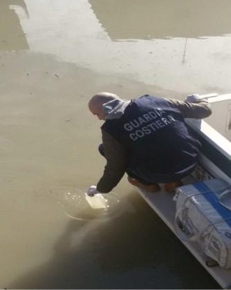 Sostanze inquinanti nel Canale Albani, denunciati i presunti responsabili – VIDEO