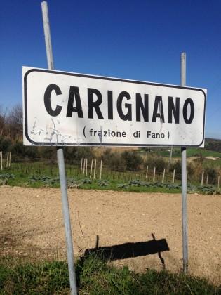 """Ospedale a Carignano, Gruppo Ambiente e Salute: """"Una Valle del Cemento"""""""