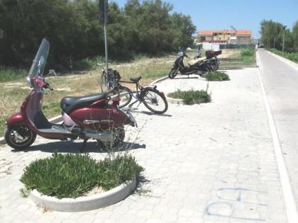 "Lupus: ""Degrado della pista ciclabile Fano – Pesaro"""