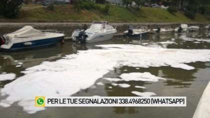 Chiazze bianche nel porto canale: ecco di che cosa si tratta – VIDEO