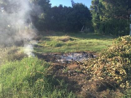 Incendio-sterpaglie-cannelle2015 (1)