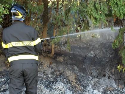 Incendio-sterpaglie-cannelle2015 (14)