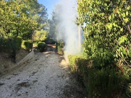 Incendio-sterpaglie-cannelle2015 (6)