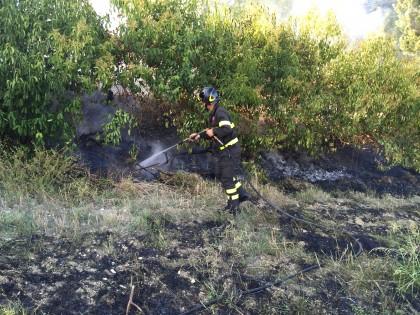Incendio-sterpaglie-cannelle2015 (9)