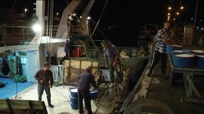 Stop al fermo pesca, il sindaco Seri saluta i pescatori – VIDEO