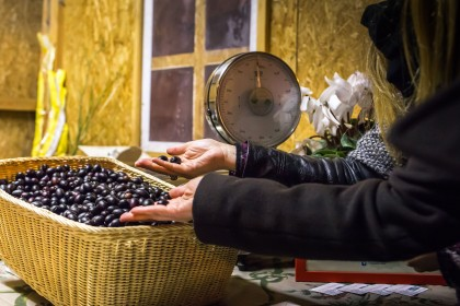 olio oliva cartoceto