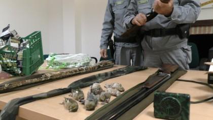 Denunciati tre bracconieri: sequestrati fucili, 2500 munizioni e fauna protetta