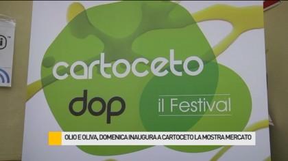 Olio e oliva, il 7 inaugura a Cartoceto la mostra mercato – VIDEO