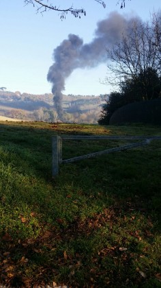 Incendio-vivaio (1)