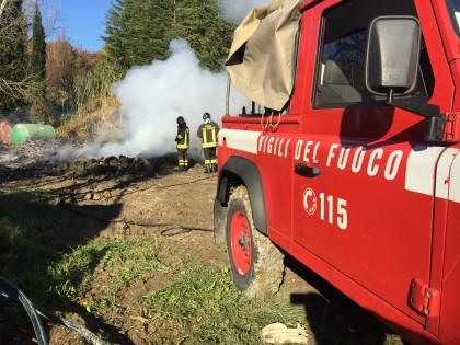 Incendio-vivaio (13)