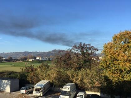 Incendio-vivaio (2)