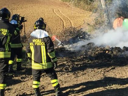 Incendio-vivaio (7)