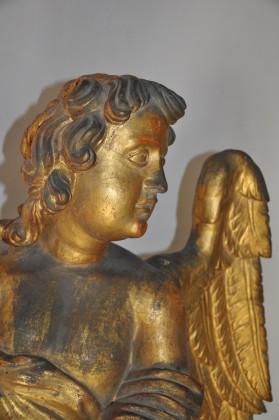 Esposizione di sei angeli lignei dorati alla Pinacoteca del Palazzo Malatestiano