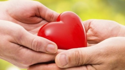 Consenso alla donazione di organi, cute e cornee: a Fano i cittadini potranno esprimersi – VIDEO