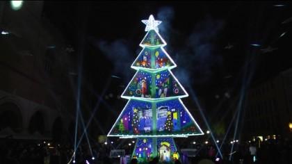Scatta una foto con l'albero di Fano e vinci – VIDEO