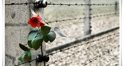 """Giorno della Memoria, Minardi ai giovani: """"Visitate i campi di concentramento"""""""
