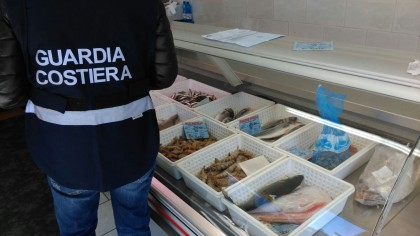 Pesca, 64 sanzioni nelle Marche e 2.200 Kg di prodotto ittico sequestrato