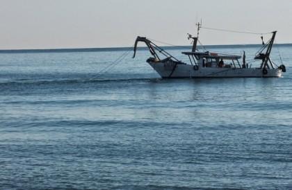 Pesca: 221 vongolare in 150 km costa, tensione nelle Marche