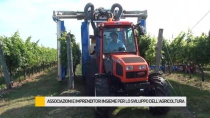 Associazioni e imprenditori insieme per lo sviluppo dell'agricoltura – VIDEO