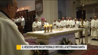 Il Vescovo apre in Cattedrale i riti della Settimana Santa – VIDEO