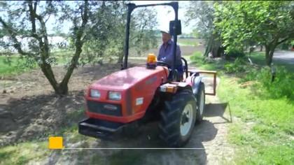 La rabbia degli agricoltori contro i piccioni devastatori – VIDEO