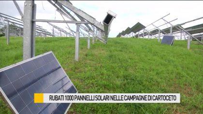 Furto a Cartoceto, rubati mille pannelli solari – VIDEO