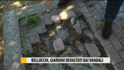 Bellocchi, giardini devastati dai vandali – VIDEO