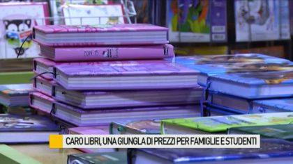 Caro libri, una giungla di prezzi per famiglie e studenti – VIDEO