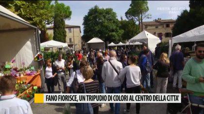 Fano Fiorisce, un tripudio di colori al centro della città – VIDEO