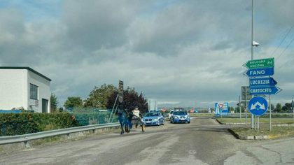 cavallo-superstrada-fano