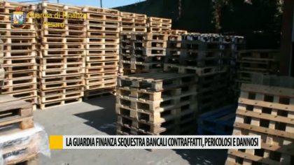 La Guardia di Finanza sequestra bancali contraffatti, pericolosi e dannosi – VIDEO