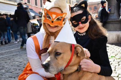 Carnevale del mattino, viale strapieno e piazza invasa dai cani mascherati
