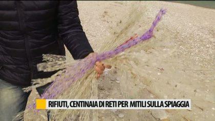 Sassonia di Fano, spiaggia libera invasa da centinaia di reti per molluschi – VIDEO
