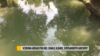 Schiuma grigiastra nel canale albani, sversamento abusivo?